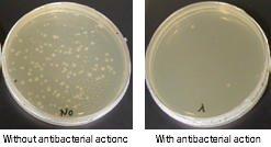 Bactericidal property
